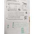 Decimal numbers, their values and numbers as written words
