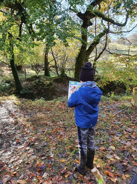 Learning about nature in forest school