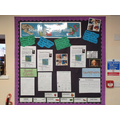 Our science working wall