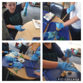 Digestive system experiment!
