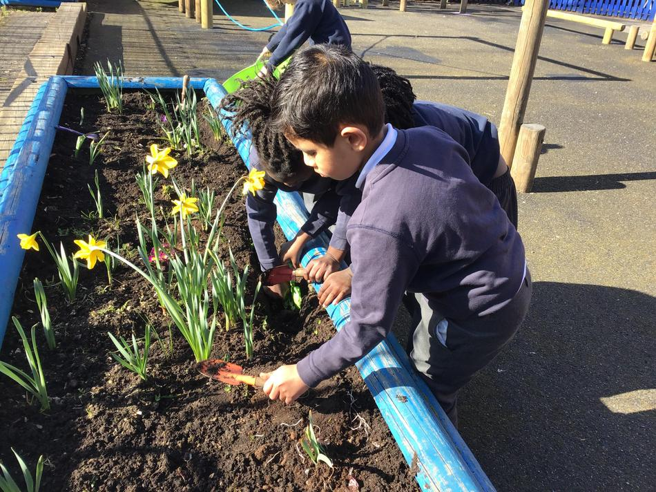 Weeding, finding minibeasts, discovering parts of plants