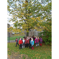 Choosing 'our' tree for science