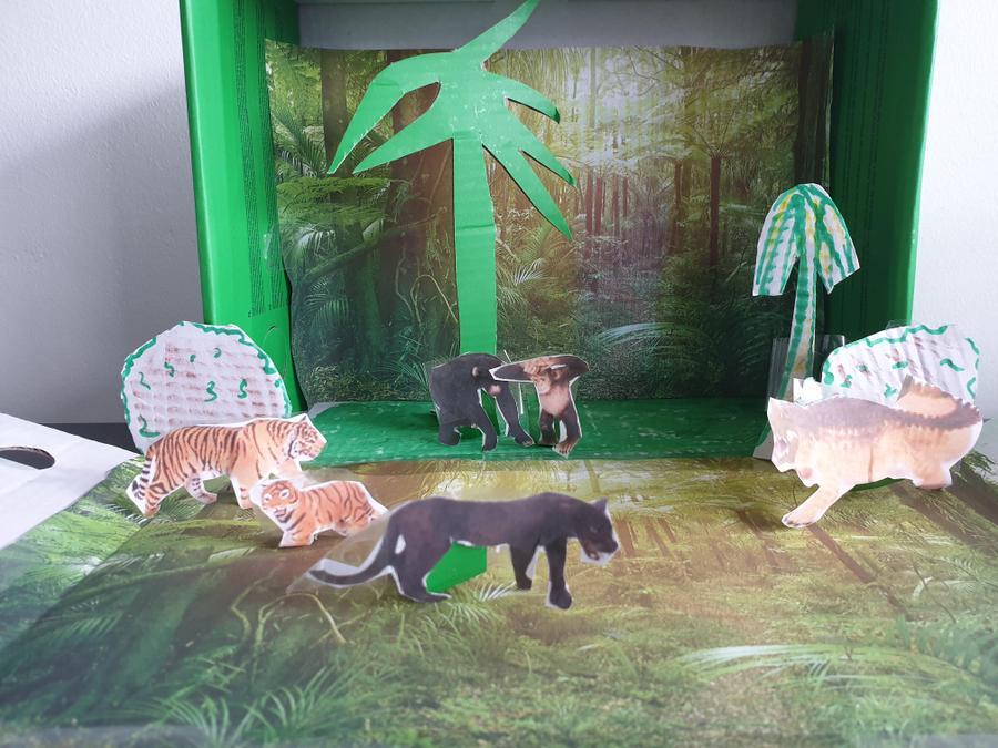 Millie's jungle habitat