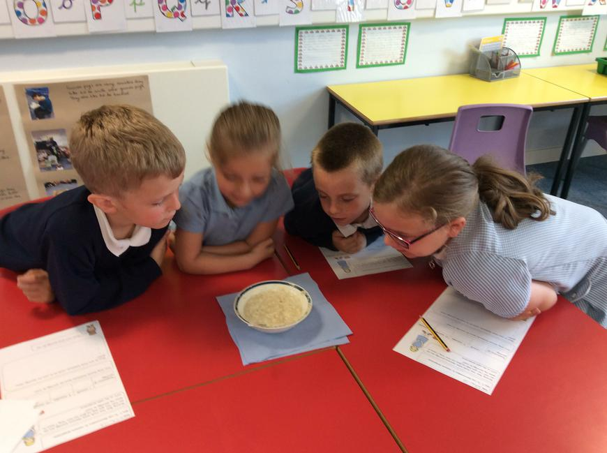 We helped Goldilocks to find out how long it takes