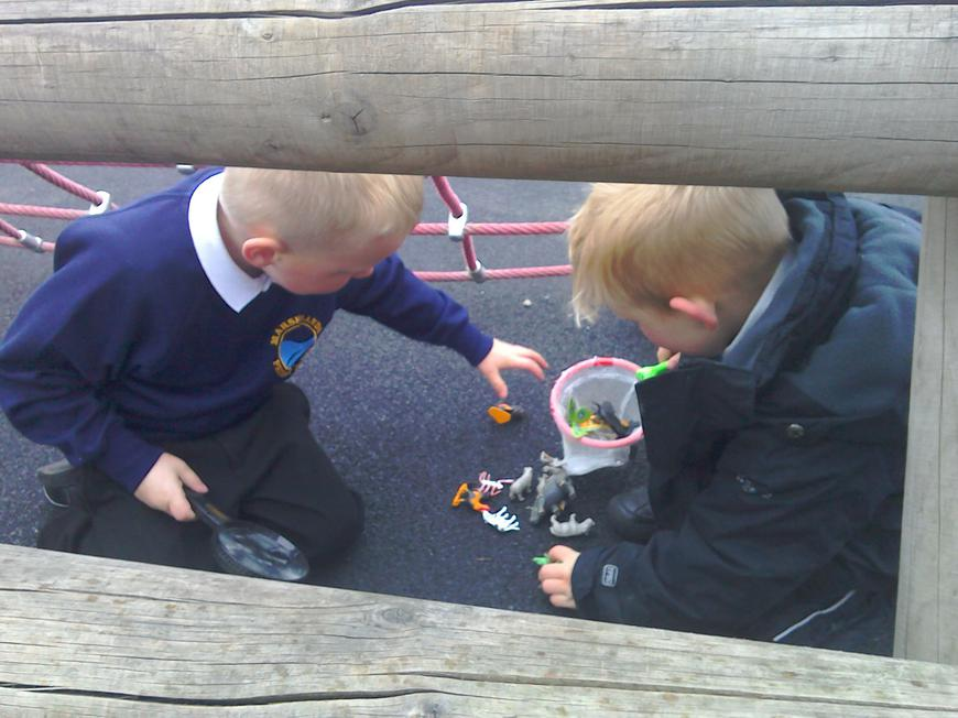 Investigating mini beasts