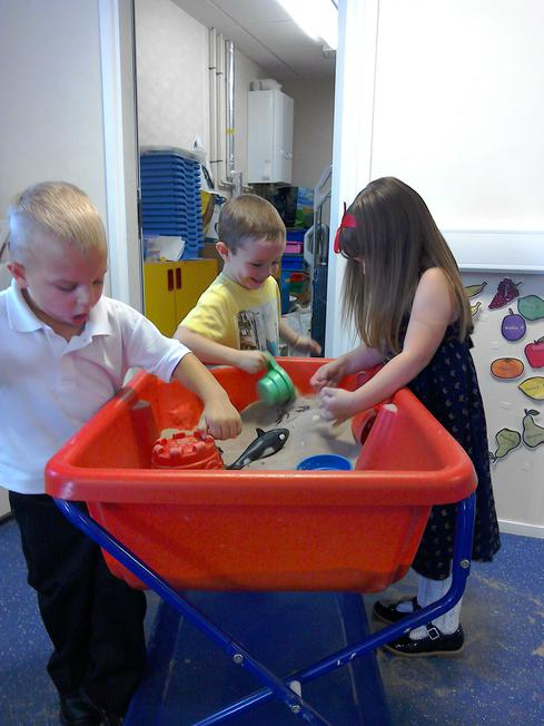Investigating the dry sand