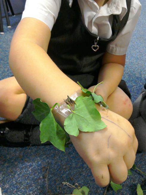 We made nature bracelets
