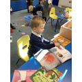 Looking at books we have read this week