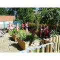 10: The School Garden