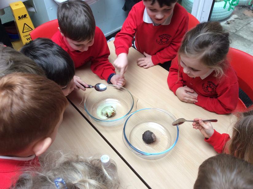 Dino egg experiment (Bicarbonate of soda + vinegar