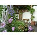 11: The Spiritual Garden
