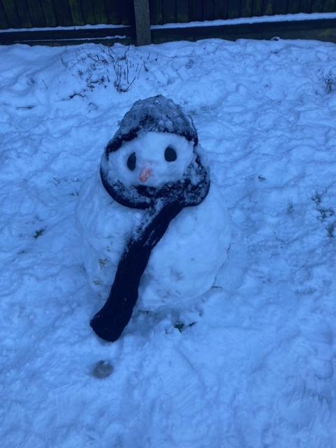 Emily's Snowman