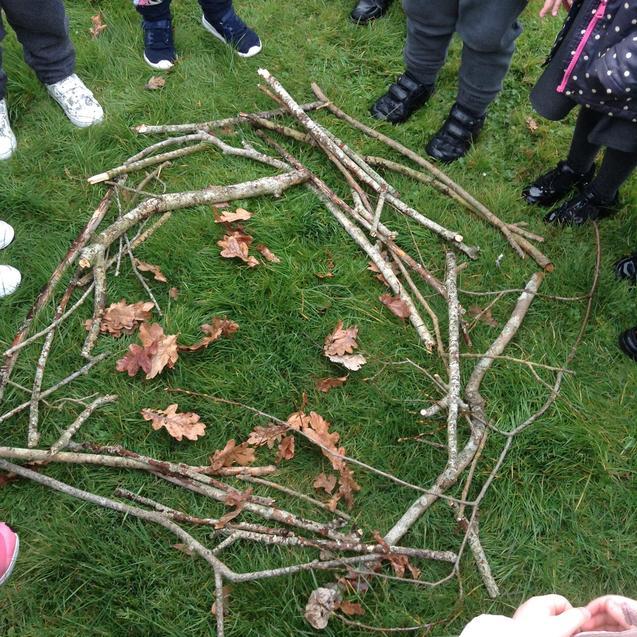 Making a birds nest