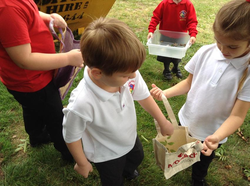 Working together to collect....