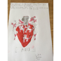 The Ross Family Crest - Liam (4P)