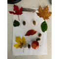 Joshua went on an Autumn walk and created a face!