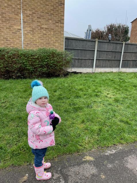 Gracie saw an owl on her winter walk!