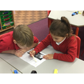 Guided reading in partners.