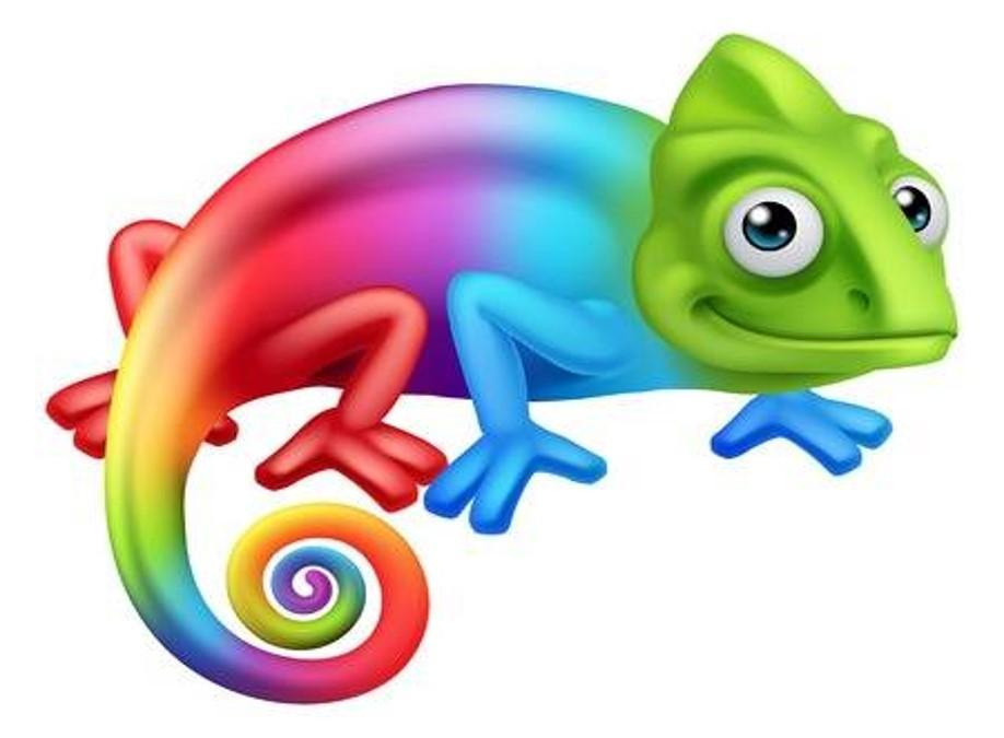 Chameleon - adapting to change