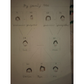 Alex's Family Tree