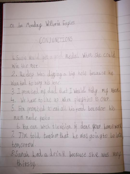 Well done Wiktoria for sharing your learning!