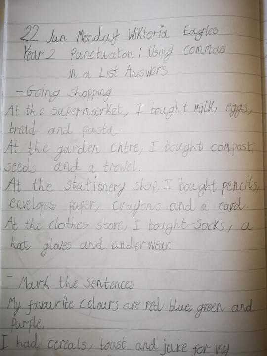 Wiktoria does her home learning EVERY day! ;)