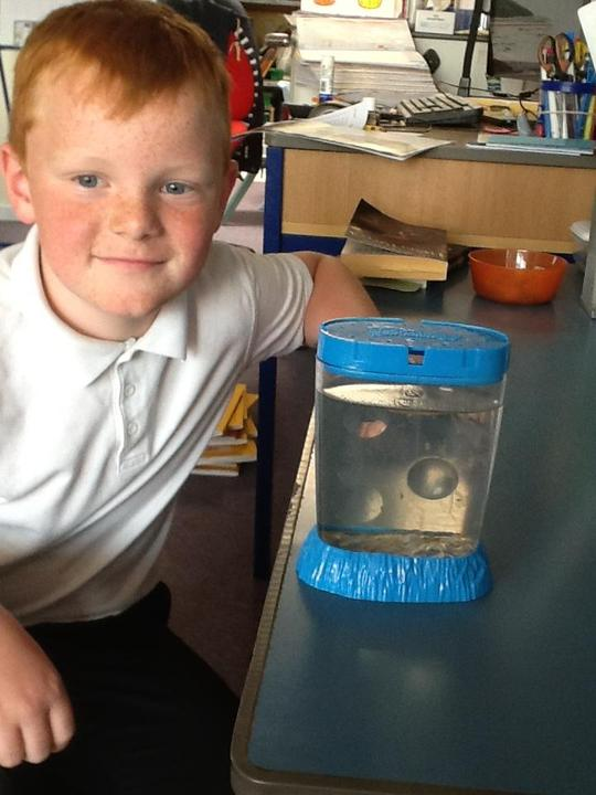 Rupert kindly donated some money to buy some Sea Monkeys for the class pet.