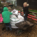 Using a wheelbarrow to move the soil