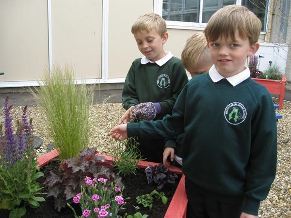 Planting up the new Sensory Courtyard