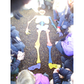 We pieced them together to create a skeleton!
