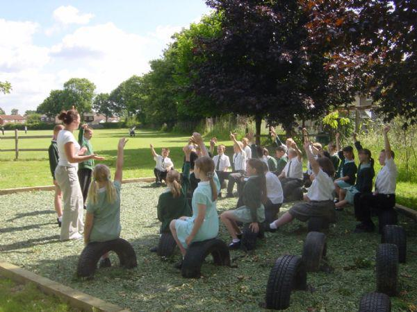 Outdoor classroom in the wild life area