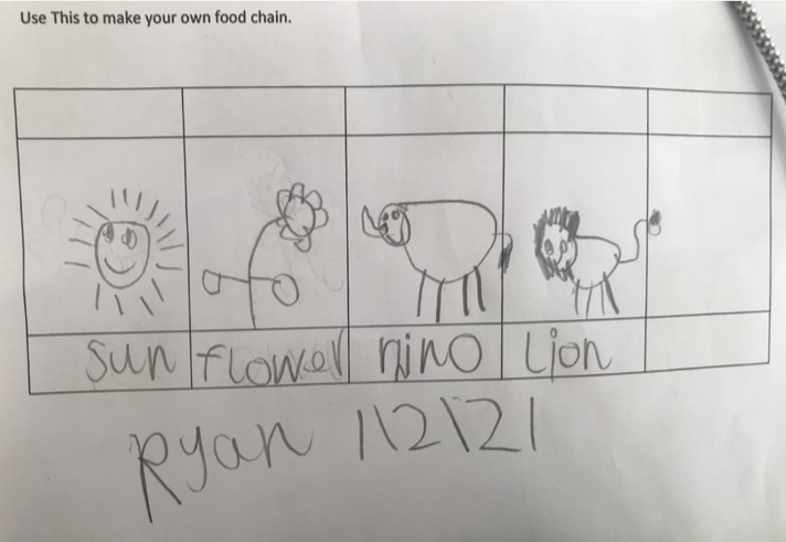 Ryan's food chain 2.1.21