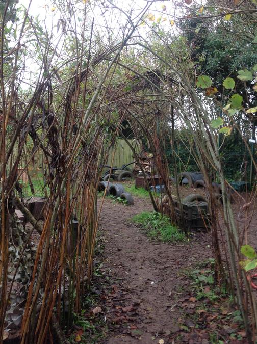 The Willow Arch