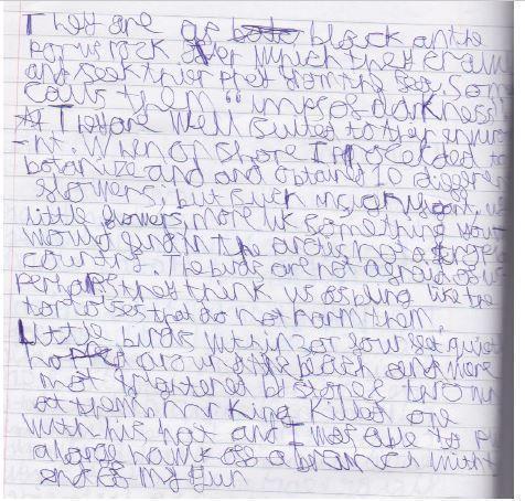 transcription of Darwin's Journal
