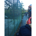 Visit to Botanic Gardens