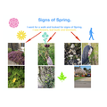 Amazing home learning: Signs of spring