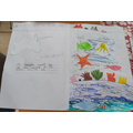 Amazing home learning: The Great Barrier Reef