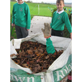 Year 6 collecting leafs and children !