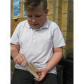 Making our Bee House