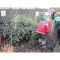 yr5 try Topiary