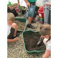 Preparing the compost
