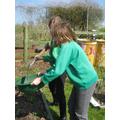 Riddling the soil