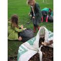 Making leaf mulch