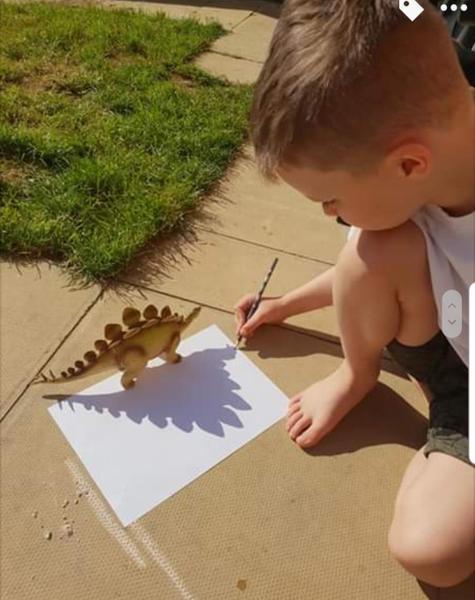 Amazing Dinosaur shadow drawing