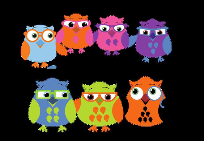 The Owl Crew
