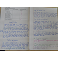 Year 4- Election party persuasive text- Rights.