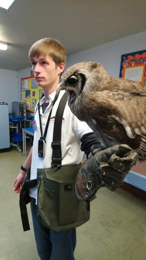Kofi The Milky Eagle Owl (& Liam)