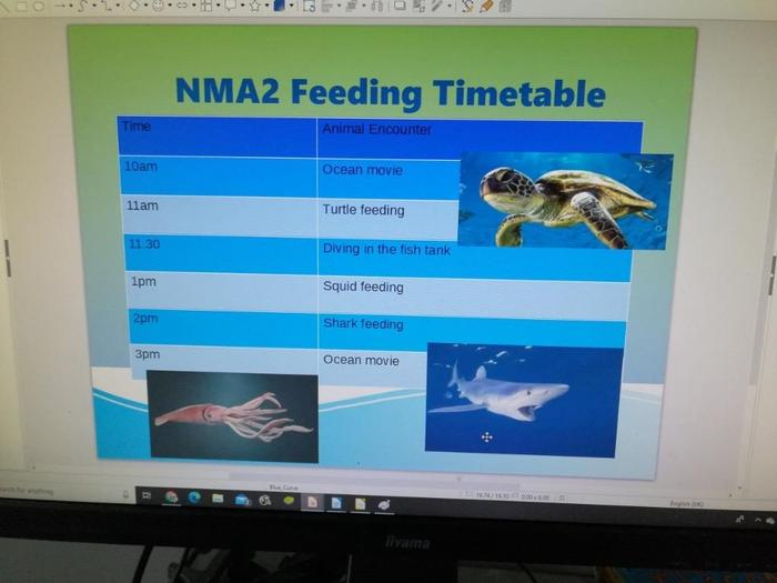 A colourful feeding timetable from Dexter.