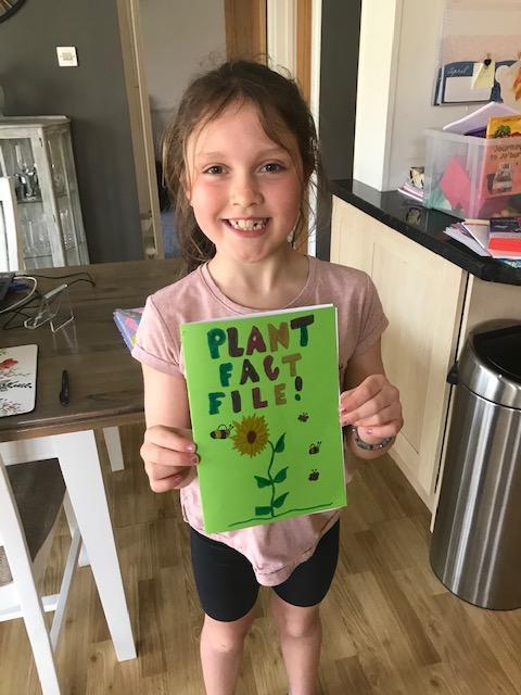 Evie's fantastic Plant Fact File 1