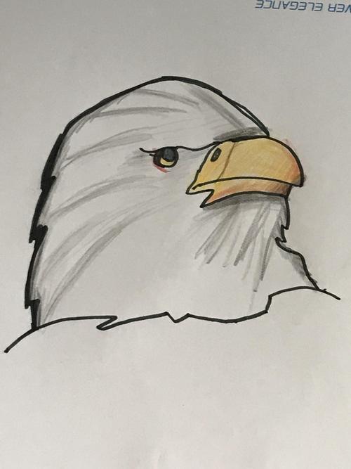 Joe's eagle drawing.
